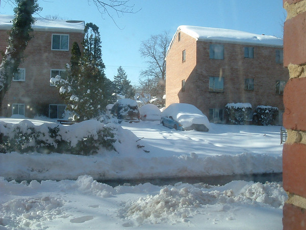 Snowpocalypse '09